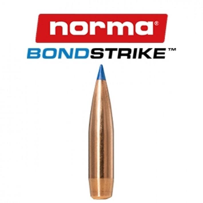 Puntas Berger Target FB calibre .224 - 55 grains